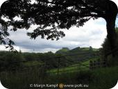 SX16186 Carreg Cennen Castle on top of distant cliffs framed by big tree.jpg