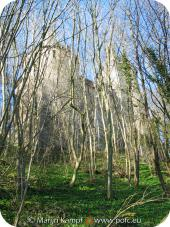 16894 Castle Coch through the trees.jpg