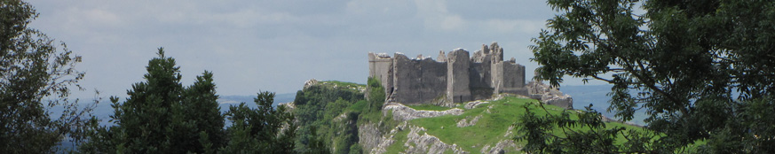 SX16176-Carreg-Cennen-Castle-on-top-of-distant-cliffs-seen-through-trees.jpg